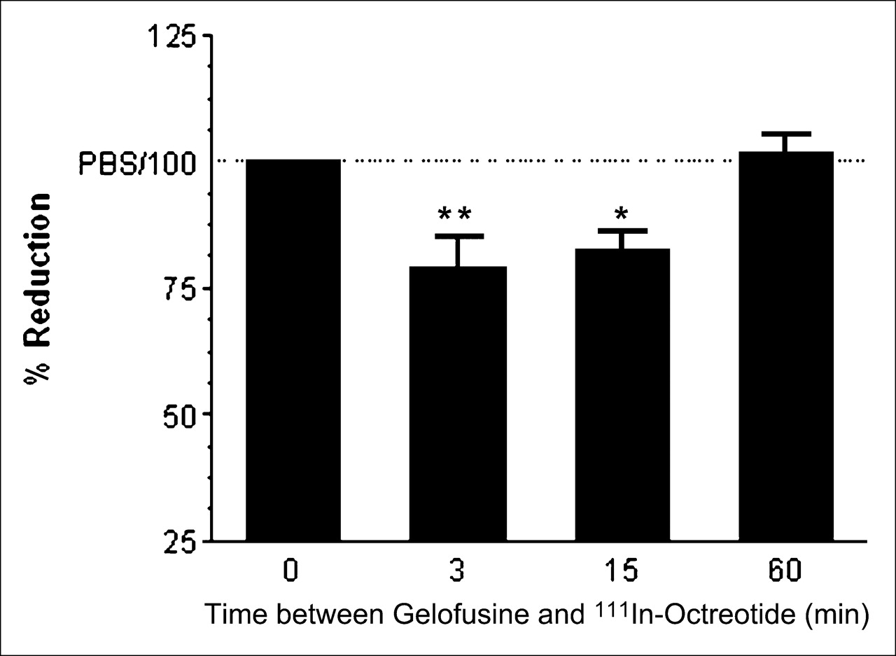 Gelatin-Based Plasma Expander Effectively Reduces Renal Uptake of  111In-Octreotide in Mice and Rats   Journal of Nuclear Medicine