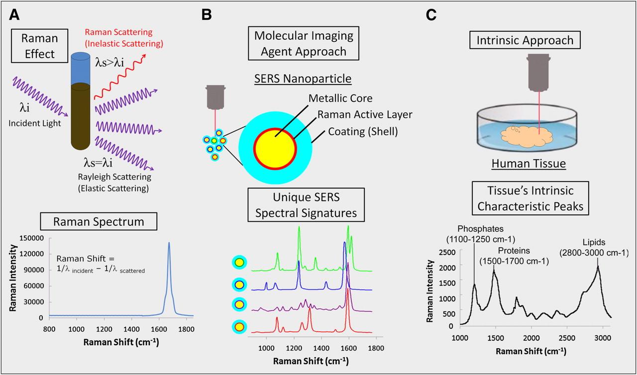 "Raman's ""Effect"" on Molecular Imaging"