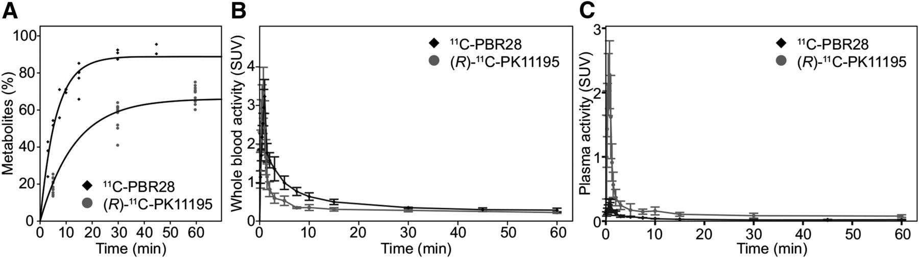 Pharmacokinetic Analysis of 11C-PBR28 in the Rat Model of Herpes