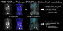 Lymph Node Staging with a Combined Protocol of <sup>18</sup>F-FDG PET/MRI and Sentinel Node SPECT/CT: A Prospective Study in Patients with FIGO I/II Cervical Carcinoma