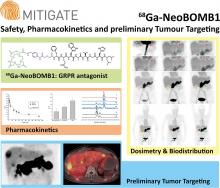 MITIGATE-NeoBOMB1, a Phase I/IIa Study to Evaluate Safety, Pharmacokinetics, and Preliminary Imaging of <sup>68</sup>Ga-NeoBOMB1, a Gastrin-Releasing Peptide Receptor Antagonist, in GIST Patients