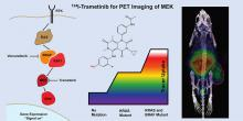Synthesis of the PET Tracer <sup>124</sup>I-Trametinib for MAPK/ERK Kinase Distribution and Resistance Monitoring
