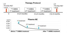 Effects of Repeated <sup>131</sup>I-<em>Meta-</em>Iodobenzylguanidine Radiotherapy on Tumor Size and Tumor Metabolic Activity in Patients with Metastatic Neuroendocrine Tumors