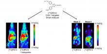 Repurposing <sup>11</sup>C-PS13 for PET Imaging of Cyclooxygenase-1 in Ovarian Cancer Xenograft Mouse Models
