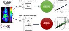 Kinetic Modeling of <sup>18</sup>F-(2<em>S,</em>4<em>R</em>)4-Fluoroglutamine in Mouse Models of Breast Cancer to Estimate Glutamine Pool Size as an Indicator of Tumor Glutamine Metabolism
